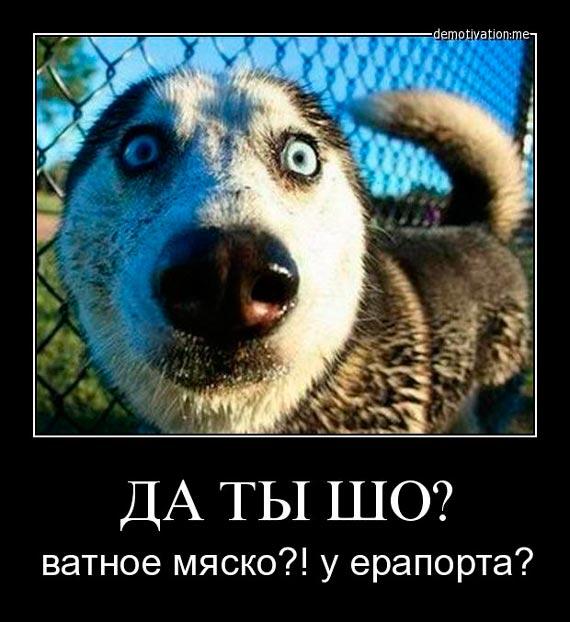 """Украина погасила долг """"Нафтогаза"""" по евробондам в 1 млрд и 670 млн долларов, - Яценюк - Цензор.НЕТ 9933"""