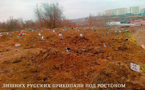 Украина будет образцовой страной в Европейском союзе, - Яценюк - Цензор.НЕТ 7969