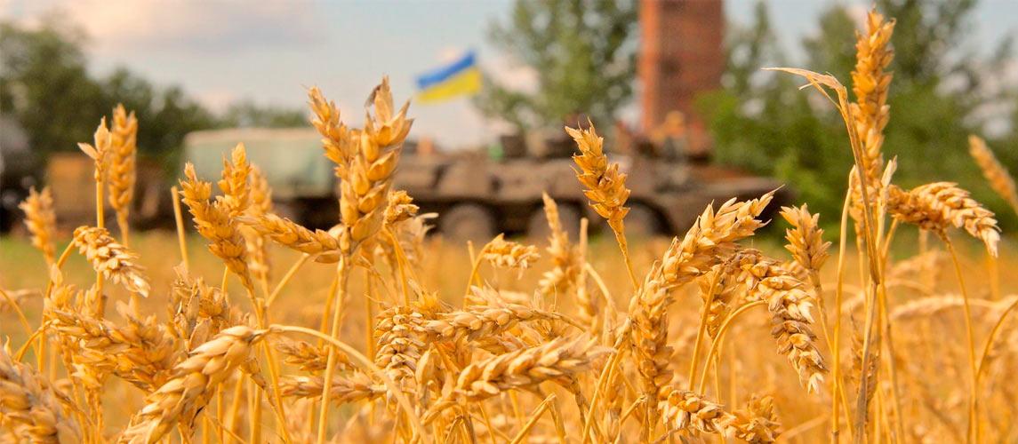 На Донбассе нужно провести местные выборы в соответствии с Конституцией Украины, - Меркель - Цензор.НЕТ 730