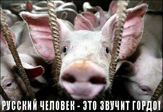 Донецкая милиция предупреждает о возможных провокациях в четверг 17 апреля - Цензор.НЕТ 5977