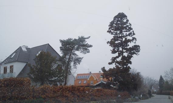 Тот самый дом в пригороде Копенгагена.